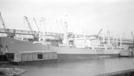 M.S. Hoegh Dyke [at dock]
