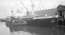 S.S. Themoni [at dock, with lumber-filled barges alongside]
