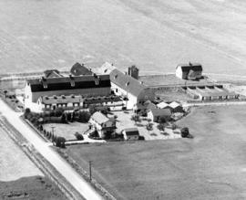 Aerial Photo of Main Dairy Buildings