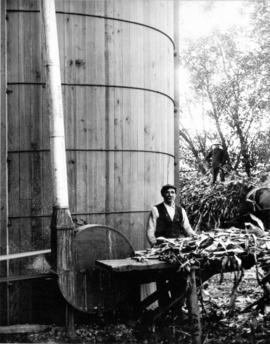 [Man stripping leaves off a plant in front of an oast (kiln)]
