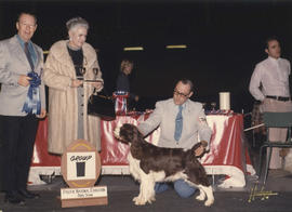Group one [Sporting group: Springer Spaniel] award being presented at 1973 P.N.E. All-Breed Dog Show