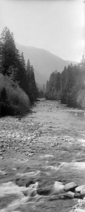 [River flowing through Capilano Canyon]