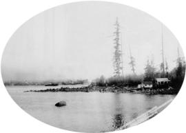 [View of a] Portion of Deadman's Island, from Stanley Park, Vancouver, B.C.