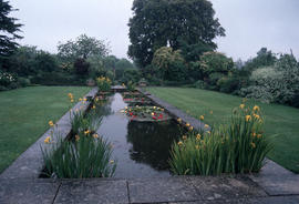 Gardens - United Kingdom : Tintinhull pond