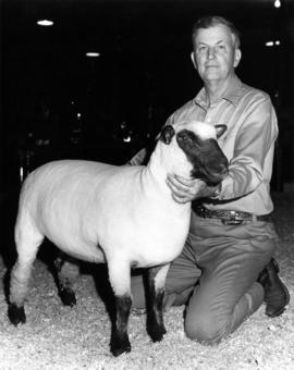 Man with sheep
