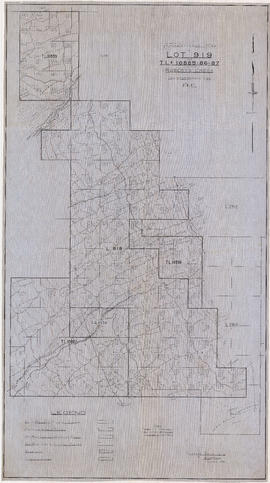 Topographical map of Lot 919 and T.L.s 10885-86-87