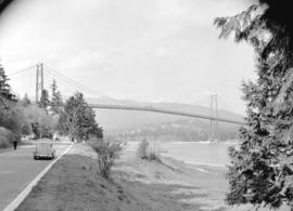 [A view of the] Lions Gate Bridge [from Stanley Park]