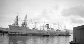 M.S. Leoville [at dock, with lumber-filled barges alongside]