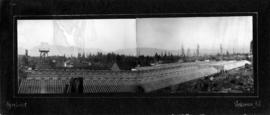 [Panorama of Brown Bros. greenhouses, 21st and Westminster Avenue]