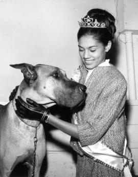 Dog show : [Nina Hamilton, Miss P.N.E. 1967, posing with Great Dane]
