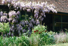 Gardens - United Kingdom : Great Dixter, England