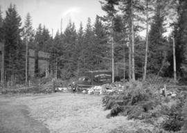 "[View of  Howe Sound Trading Company truck at ""Havencot""]"