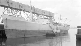 M.S. Ithaca Island [at dock]