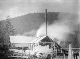 [Buildings and surrounding lumber, Fraser Valley Sawmill]