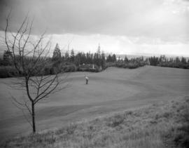 [Man playing golf on Capilano Golf Course]