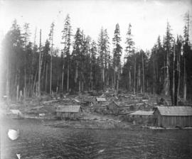 [View of a logging camp from the water]