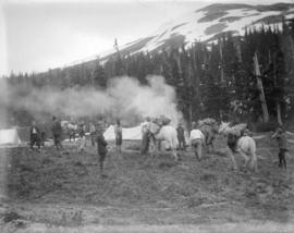 [Arrival of pack horses at B.C. Mountaineering Club camp in Garibaldi District]