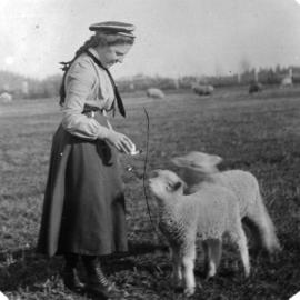 [Woman with sheep]