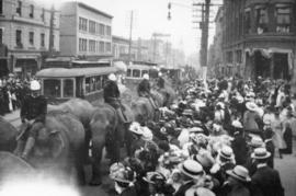 [Parade of elephants on Granville Street]