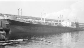 M.S. Ilice [at dock]