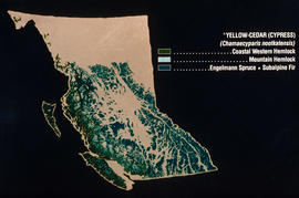 Bioclimatic zones of British Columbia : [untitled]