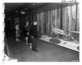 Logging exhibit in P.N.E. B.C. building