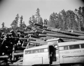[Pile of logs behind a Victoria Lumber Co. locomotive]