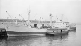 M.S. Cap Bonavista [at dock]