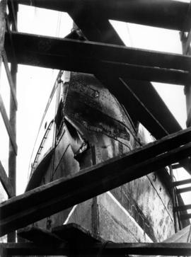 "[S.S. ""Chelohsin"" in drydock showing damaged bow]"