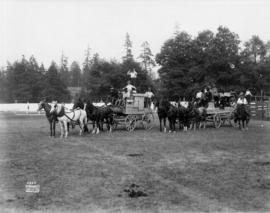 Two four-horse teams pulling a stagecoach