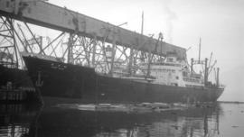 S.S. Kobe Maru [at dock, with lumber-filled barges alongside]