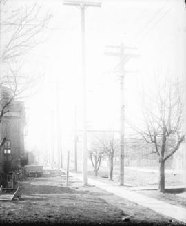 [Newly installed power poles on Burrard Street, looking south from near Dunsmuir Street]