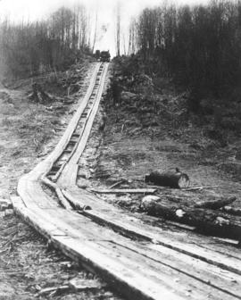 [View of wooden logging road for trucks]