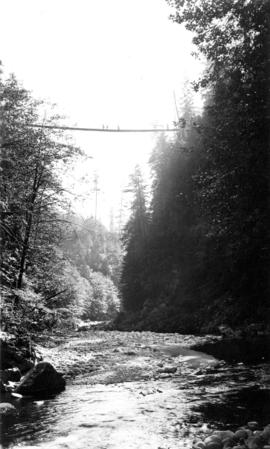 Below the swinging bridge - Capilano Canyon