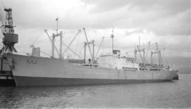 M.S. Peru Maru [at dock]