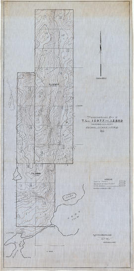 Topographical map of T.L's 12977 and 12889. T.L's 32362 and 40601. Nelson Island-New We...