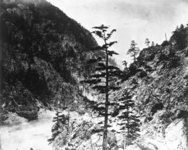 [The Cariboo Road between Hell's Gate and Alexandra Bridge]