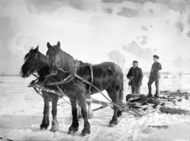 [Man and boy with horsedrawn sled]