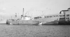 "S.S. White Eagle [at dock, at Pier ""B""]"