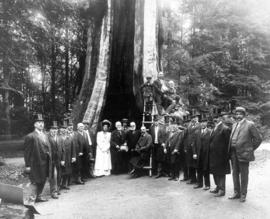 Lord Strathcona and Canadian Club at the Hollow Tree, Stanley Park