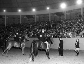Saddle horse judging at 1963 P.N.E. Horse Show in Agrodome