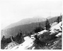 [View of] Eagle Crags, the Lions, Mount Capelano, 3750 ft.