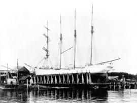 "[Brigantine ""Georgina"" at Wallace Shipyards]"