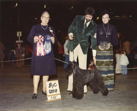 Best in Group [Terrier Group: Kerry Blue Terrier] award being presented at 1975 P.N.E. All-Breed ...