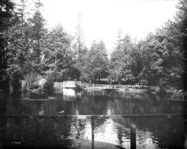[Beacon Hill Park, duck pond and fountain]