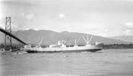 M.S. Hoegh Silverlight