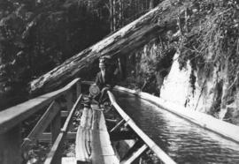 [Shingle bolt flume along Capilano Canyon]