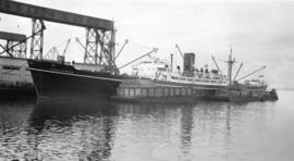 S.S. Tregenna [at dock, with lumber-filled barges alongside]