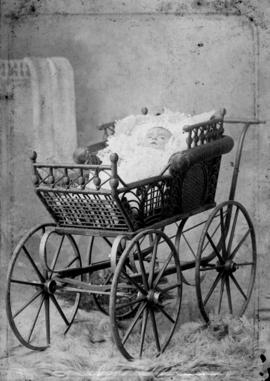 [Studio portrait of a baby in a buggy]