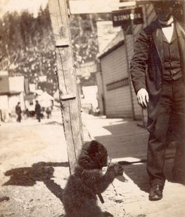 [Bear cub chained to a post]